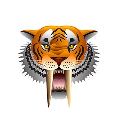 Saber-toothed tiger face isolated on white vector