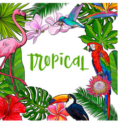 banner with tropical palm leaves birds flowers vector image