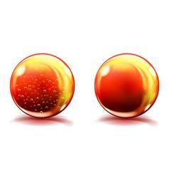 Two big orange glass spheres vector