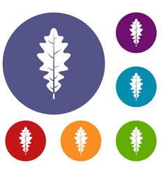 Oak leaf icons set vector