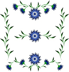 Vignettes of blue cornflower and green leaves vector