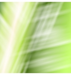 Abstract white green background vector