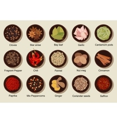 Natural healthy fresh and dried spices flat icon vector image