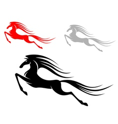 mustang horses vector image vector image