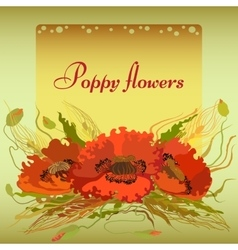 Green frame with red poppy flowers and spike lets vector
