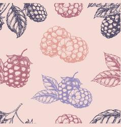 raspberry blackberry seamless pettern vector image vector image