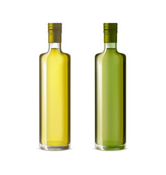 Realistic detailed olive oil glass bottle set vector