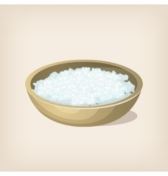 Sea salt flakes in a bowl vector
