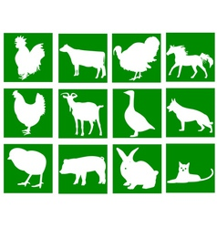 Domestic animals in the green squares vector