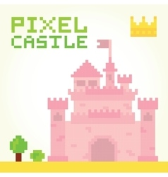 Pixel art girl castle isolated vector
