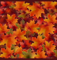 autumn leaves pattern background realistic vector image