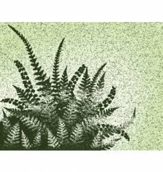 fern grunge vector image vector image