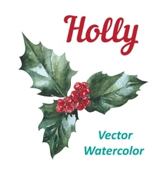 Holly berry icon Christmas symbol vector image