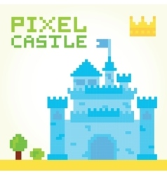 Pixel art boy castle isolated vector