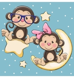 Lovers monkeys on a moon and star vector
