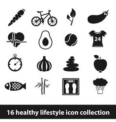 16 healthy lifestyle icon collection vector