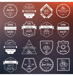 Set vintage cycling and bicycle sign and badges vector