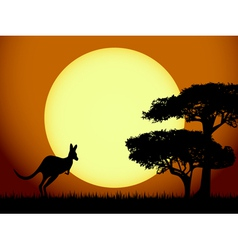 Kangaroo at sunset vector
