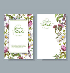 herbal banners vector image vector image