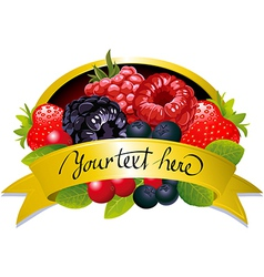 label with berries vector image vector image