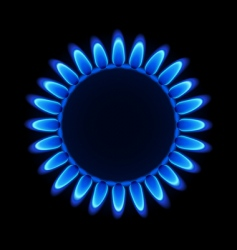 natural gas flame vector image vector image