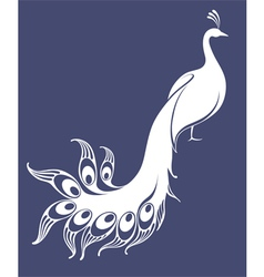 White peacock vector