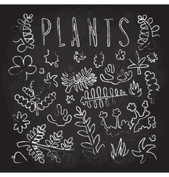 Hand drawn doodle plants isolated objects vector