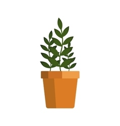Flower icon logo in pot nature spring plant vector image
