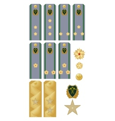 Insignia Customs Service of Russia vector image vector image