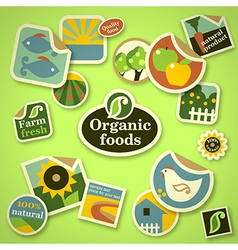 Organic food stickers vector image vector image