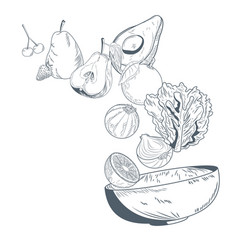vegetable and fruits on bowl hand draw vector image vector image