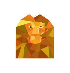 lion head front low polygon vector image