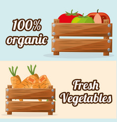 Fresh vegetables organic with wooden box image vector