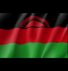 National flag of malawi vector