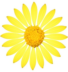 A yellow sunflower vector