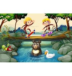 Monkeys on skateboard in the forest vector image