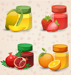 Fruits and juice in a glass jar Set 2 vector image vector image