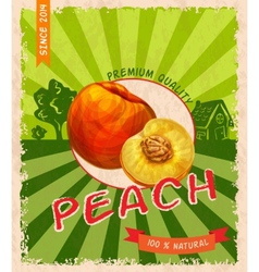 Peach retro poster vector image