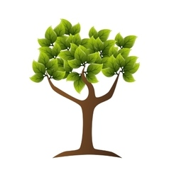 tree green ecology vector image