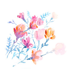 watercolors colorful flowers vector image