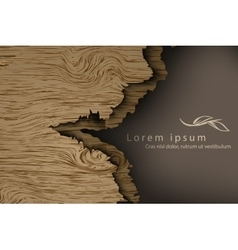 Wooden background with shadows vector