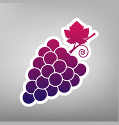 Grapes sign purple gradient vector