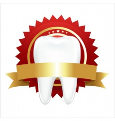 tooth with guarantee vector image vector image