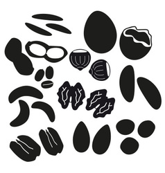 Various nuts types black icons set eps10 vector