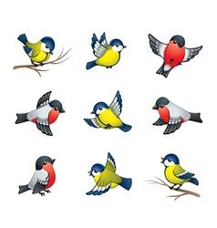 winter birds vector image vector image