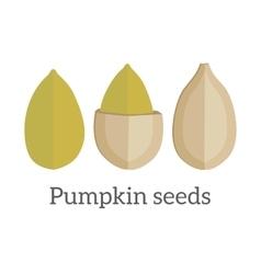 Pumpkin seeds in flat design vector