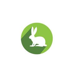 Rabbit logo template icon desi vector