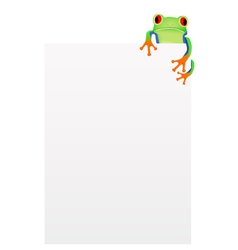Red eyed tree frog background vector image