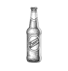 Beer bottle isolated vector image