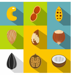 edible nuts icons set flat style vector image
